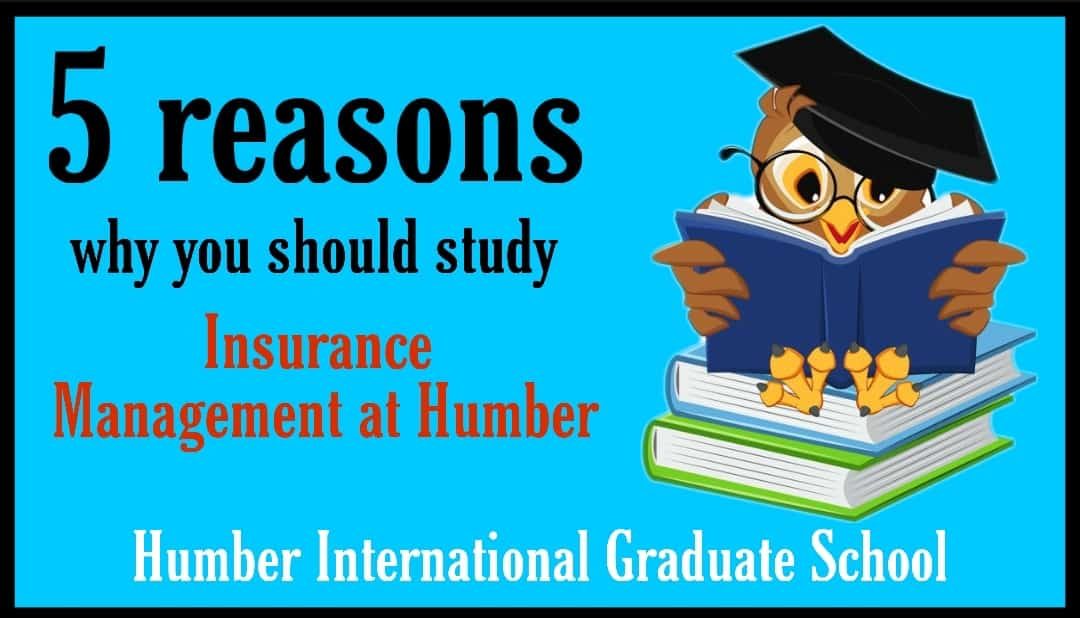 Why Study Insurance Management at Humber humber college humber north campus humber international graduate school humber lakeshore humber college programs humber international graduate school address humber international graduate school ranking humber igs address humber international graduate school humber international graduate school location humber lakeshore humber north campus humber college programs insurance management salary insurance management program insurance and risk management fanshawe centennial college insurance management insurance management courses in canada insurance management syllabus insurance management salary insurance management program insurance and risk management fanshawe humber college health insurance for students centennial college insurance management insurance management courses in canada insurance management syllabus insurance management property and casualty humber college humber college graduate programs humber north campus humber college lakeshore humber international graduate school ranking humber international graduate school reviews humber international graduate school ranking humber international graduate school reviews humber international graduate school location humber college programs for international students humber north campus humber college graduate programs humber igs campus location