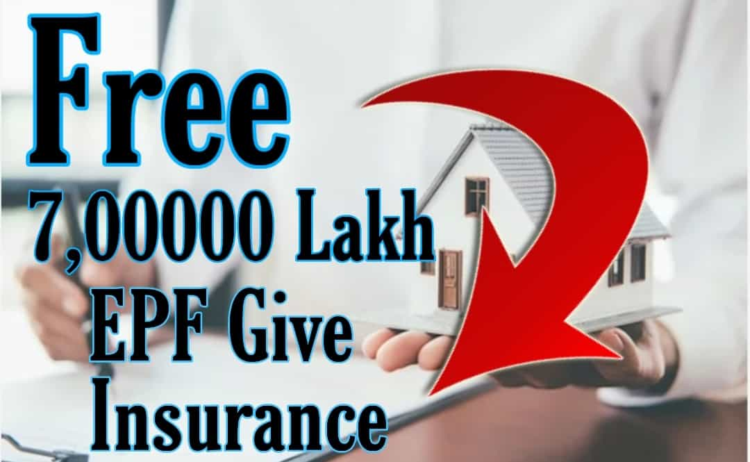 EPF life insurance how to claim eligibility, premium, benefits EPF gives life insurance of Rs 7,00000 to every member